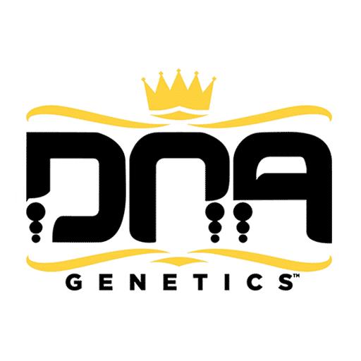 DNA Genetics Seeds