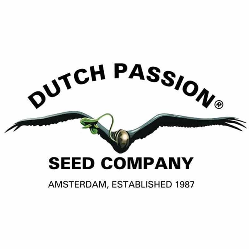 Dutch Passion Seeds